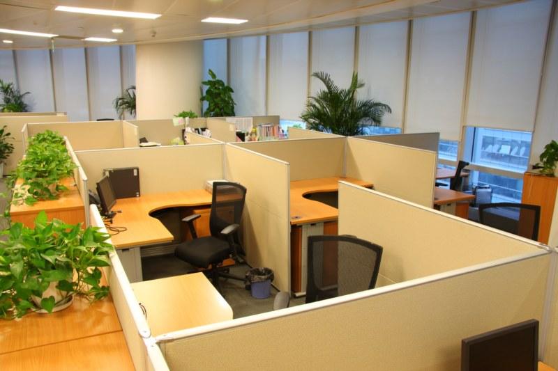 Phong thủy trong văn phòng làm việc cũng mang yếu tốt ảnh hưởng đến thịnh suy của văn phòng